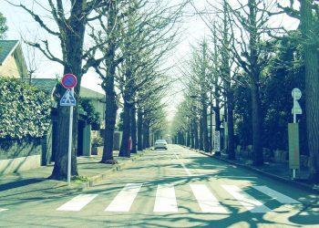 道路,町,屋外,冬,晴れ,昭和レトロ