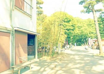 道路,町,夏,屋外,晴れ,昭和レトロ