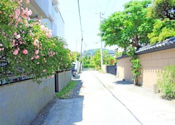 道路,町,屋外,夏,晴れ