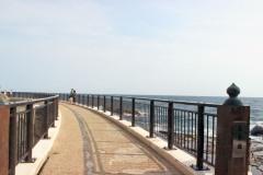 浜辺,春,屋外,晴れ