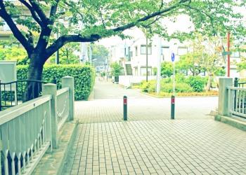 川,町,夏,屋外,曇り,昭和レトロ