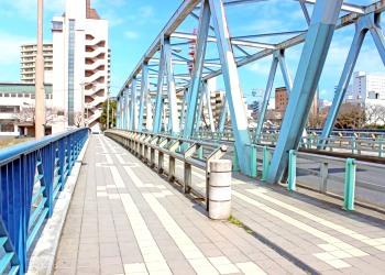 橋,町,屋外,秋,晴れ