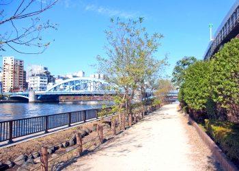 川,橋,都会,屋外,春,晴れ