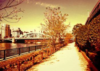 川,橋,都会,屋外,春,晴れ,ヴィンテージ