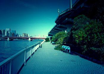 川,橋,都会,屋外,春,晴れ,ホラー