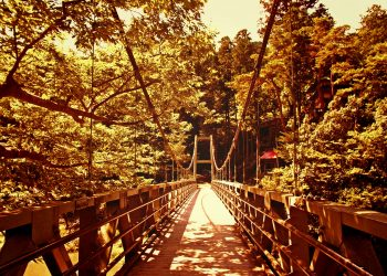 橋,村,屋外,夏,晴れ,ヴィンテージ