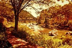 川,アウトドア,晴れ,秋,屋外