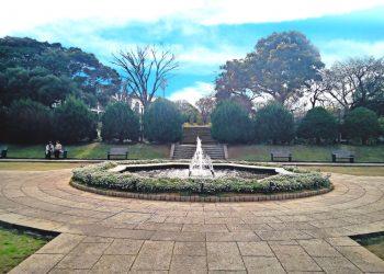 公園,都市,屋外,冬,晴れ