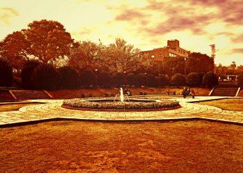 公園,都市,屋外,冬,晴れ,ヴィンテージ