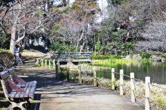 公園,町,屋外,冬,晴れ