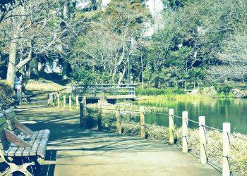公園,町,屋外,冬,晴れ,昭和レトロ
