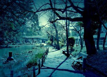 公園,町,屋外,冬,晴れ,ホラー