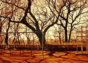 町,公園,冬,屋外,晴れ,ヴィンテージ