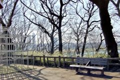 町,公園,冬,屋外,晴れ