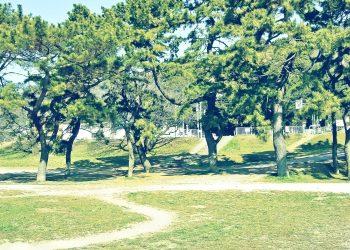 町,公園,冬,屋外,晴れ,昭和レトロ
