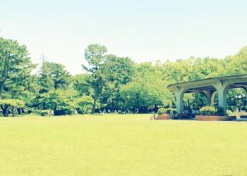 公園,町,屋外,晴れ,春,昭和レトロ