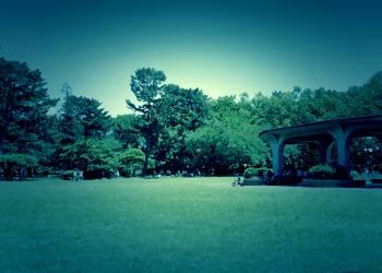 公園,町,屋外,晴れ,春,ホラー