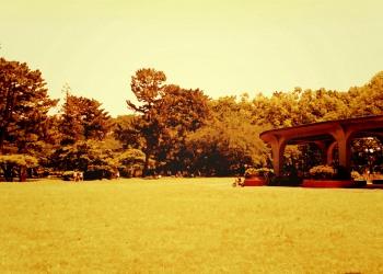公園,町,屋外,晴れ,春,ヴィンテージ