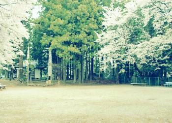 公園,町,屋外,春,晴れ,昭和レトロ