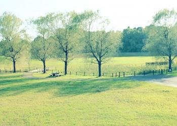 公園,町,冬,屋外,曇り,昭和レトロ