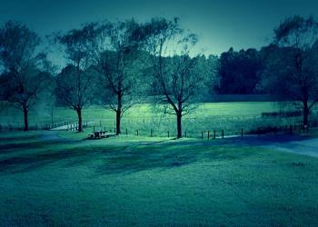 公園,町,冬,屋外,曇り,ホラー