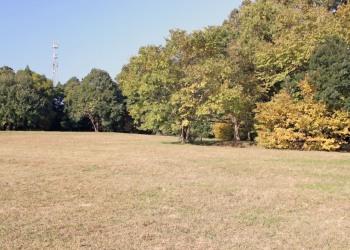 公園,町,屋外,秋
