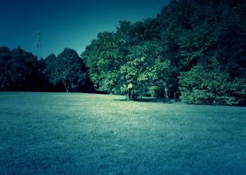 公園,町,屋外,秋,ホラー