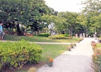 公園,町,屋外,夏