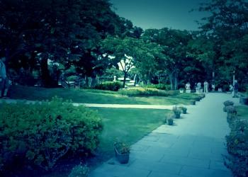 公園,町,屋外,夏,ホラー
