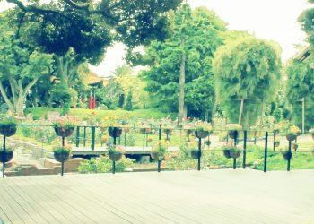 公園,町,屋外,夏,曇り,昭和レトロ
