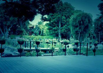 公園,町,屋外,夏,曇り,ホラー