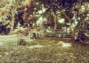 公園,町,晴れ,屋外,昭和レトロ