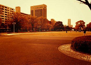 公園,都市,屋外,冬,曇り,ヴィンテージ