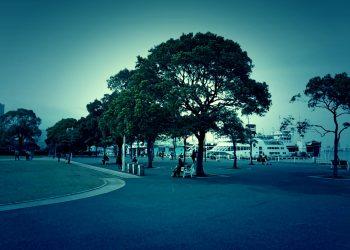 港,都市,公園,屋外,秋,曇り,ホラー