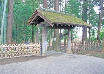 日本庭園,和,屋外,春,曇り