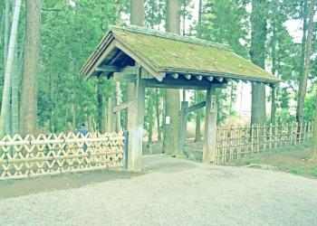 日本庭園,和,屋外,春,曇り,昭和レトロ