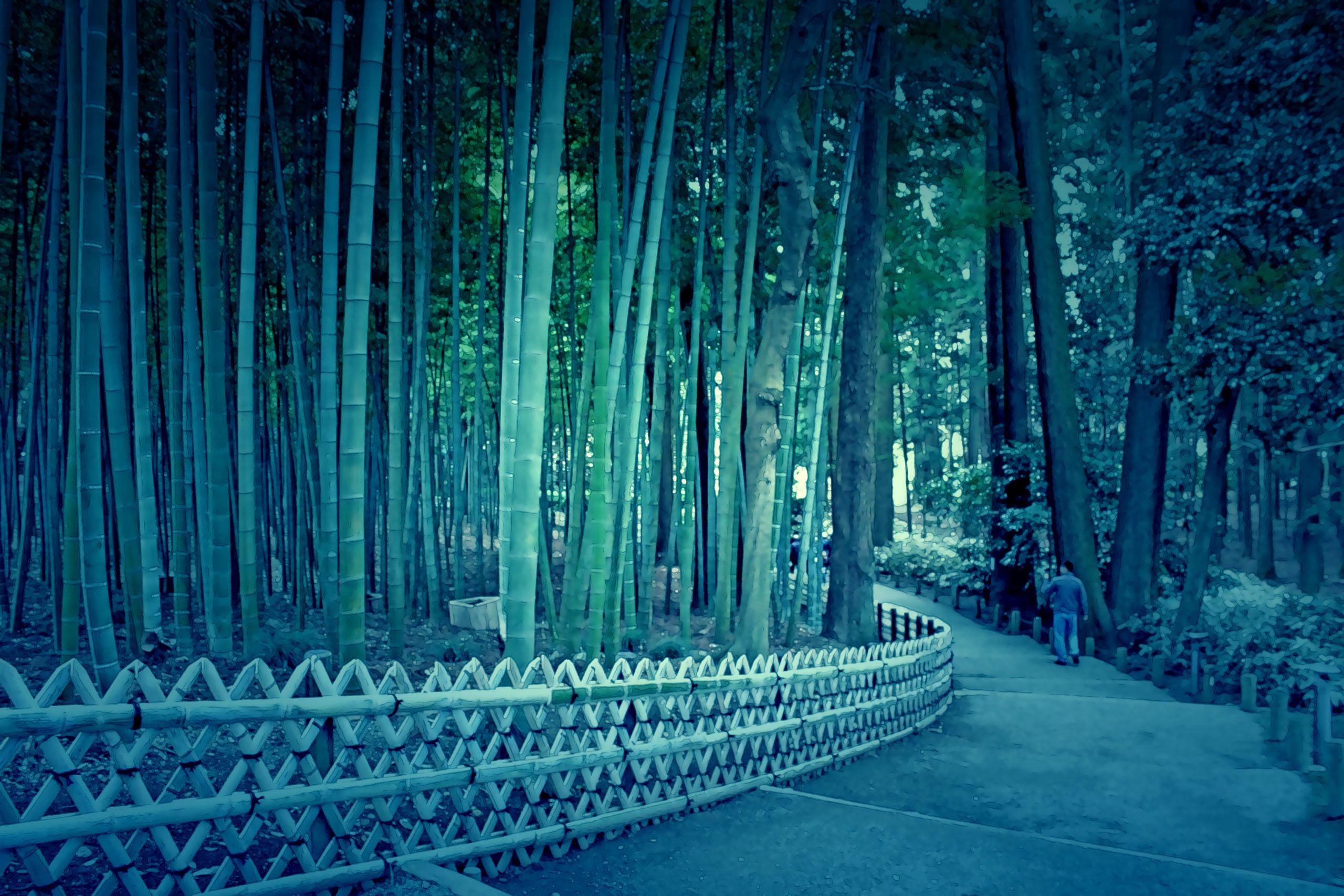 日本庭園,和,屋外,春,曇り,ホラー