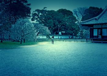 日本庭園,和,曇り,屋外,春,ホラー