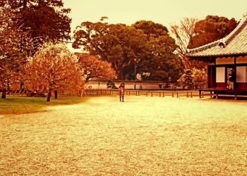 日本庭園,和,曇り,屋外,春,ヴィンテージ