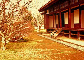 日本家屋,日本庭園,村,屋外,冬,曇り,ヴィンテージ