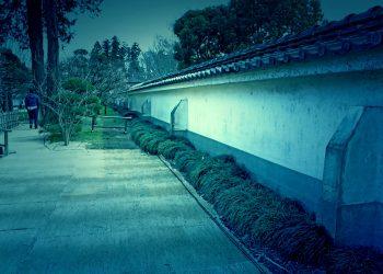 日本家屋,日本庭園,和風,屋外,春,晴れ,ホラー