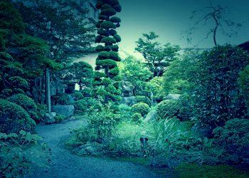 日本庭園,和風,屋外,春,晴れ,ホラー
