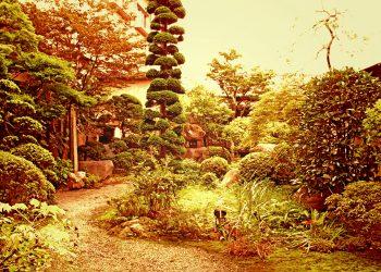 日本庭園,和風,屋外,春,晴れ,ヴィンテージ