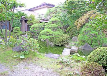 日本庭園,和,屋外,夏,曇り