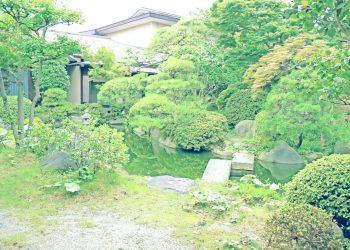 日本庭園,和,屋外,夏,曇り,昭和レトロ