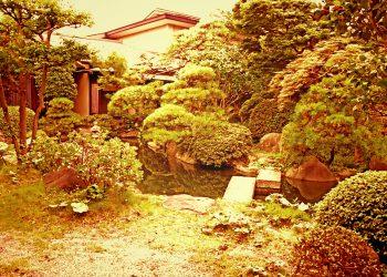 日本庭園,和,屋外,夏,曇り,ヴィンテージ