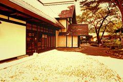 日本庭園,村,和,屋外,夏,晴れ