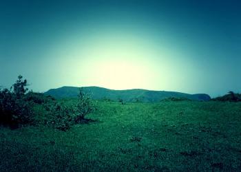 草原,アウトドア,屋外,夏,晴れ,ホラー