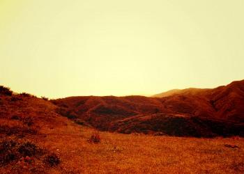 草原,アウトドア,屋外,夏,晴れ,ヴィンテージ