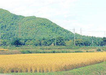 草原, 村, 屋外, 秋, 晴れ,昭和レトロ